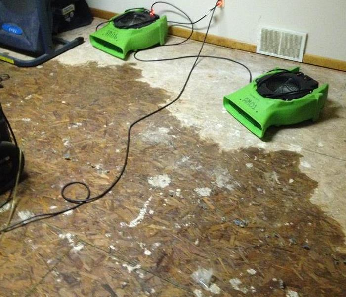 Mold is no match for SERVPRO