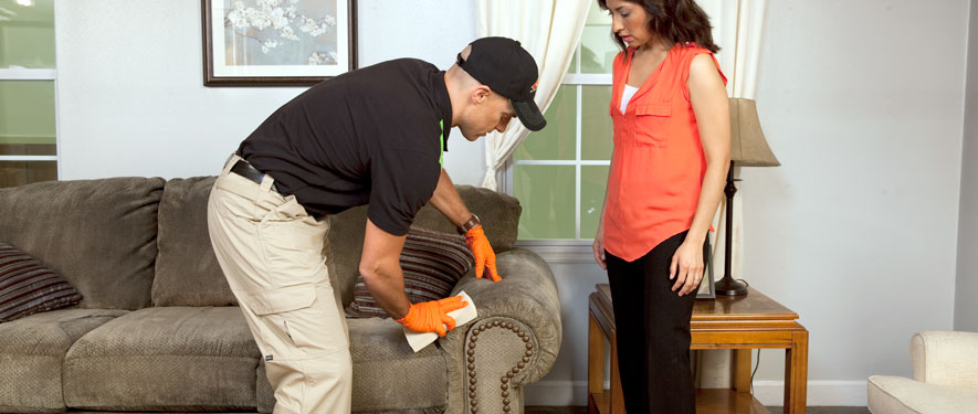 Huntington, WV carpet upholstery cleaning